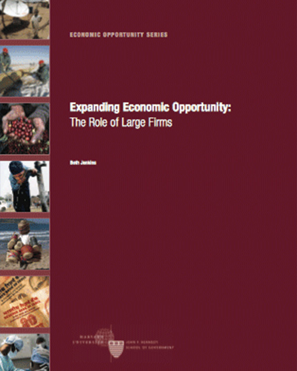 Expanding Economic Opportunity: The Role of Large Firms