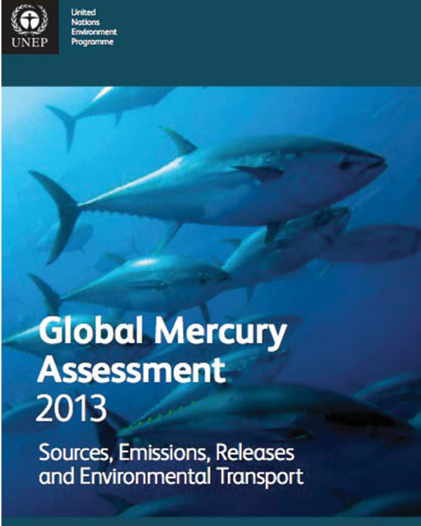 Global Mercury Assessment