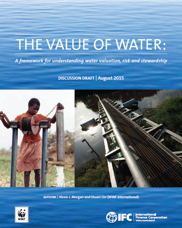 Rethinking the Value and Risks of Water for the Private Sector